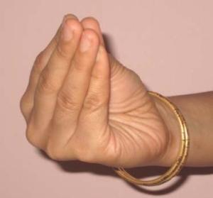 Image result for the fingers together