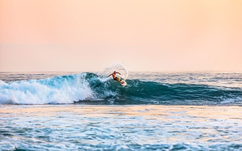 Surfing 1-Pixabay